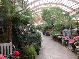 Une allée de jardinerie très lumineuse   Photo commons.wikimedia.org